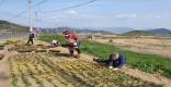 [고령]개진면, 코로나19로 위축되어 있는 지역에 따뜻한 봄을 선물하다